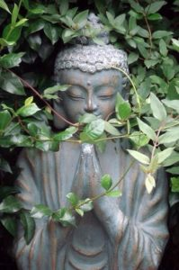 Intro to Insight Meditation